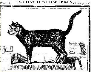 Le chat qui rit jaargang 1, nummer 4, juli 2006