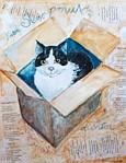 """Ga naar """"De kat zijn viool"""" voor leuke illustraties"""