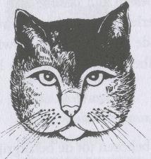 kattentaalgezicht4