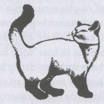 Naar: Kattentaal, lichaam