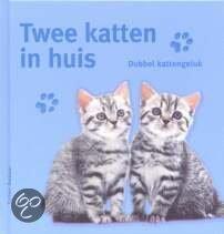 twee katten in huis