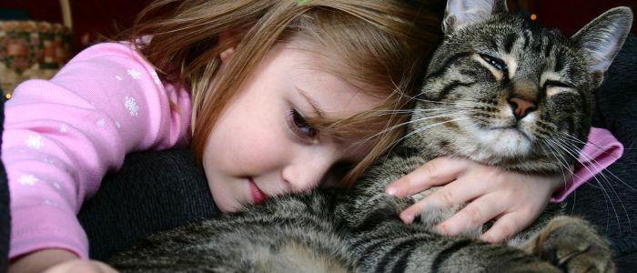 kind-met-kat