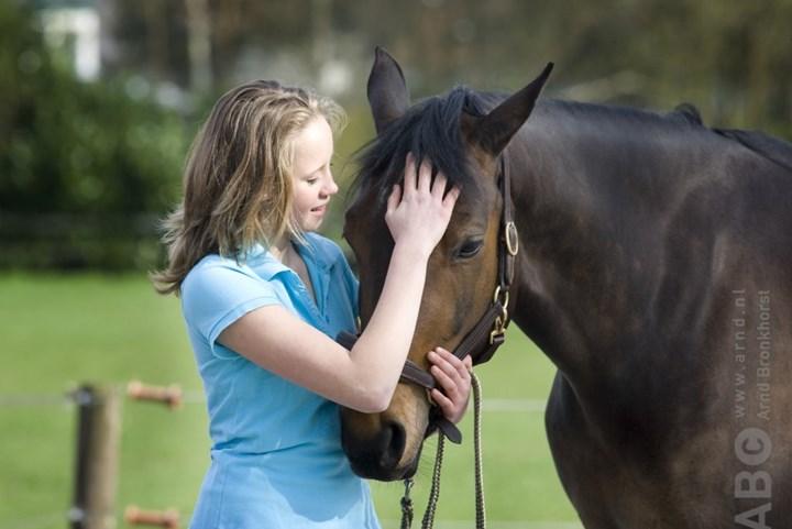 Paard verwennen