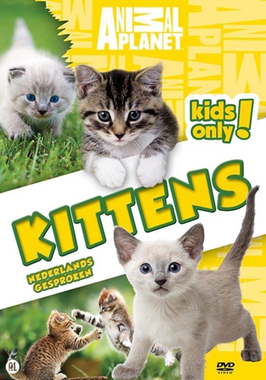 Naar: DVD's over en met katten