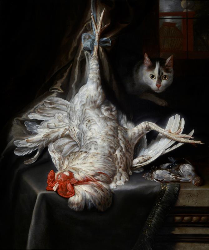 Vogelstilleven met kat