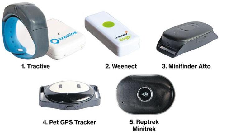 GPS-trackers voor huisdieren. De uitslag.